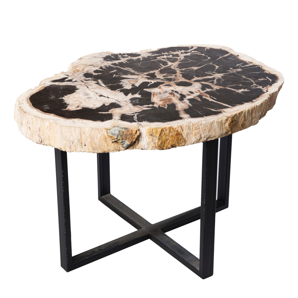 Petrified Wood Upper West Side Table PF 1041 Pictures Gallery