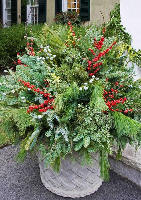 Decorating Ideas > Tips For Winter Pots — Enchanted Gardens ~ 030221_Fresh Ideas For Outdoor Christmas Decorations