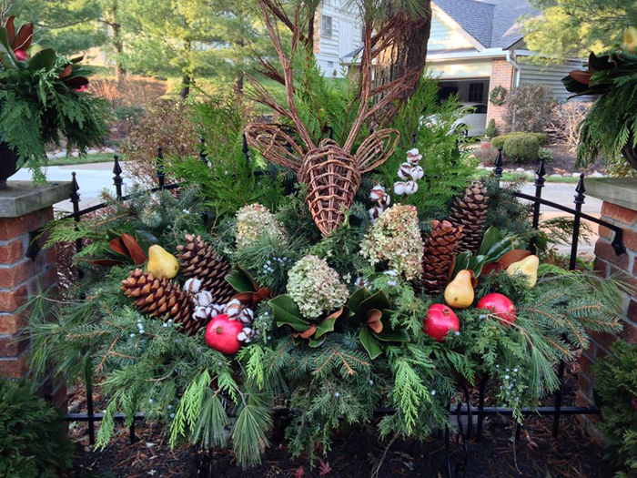 Tips for Winter Pots Enchanted Gardens