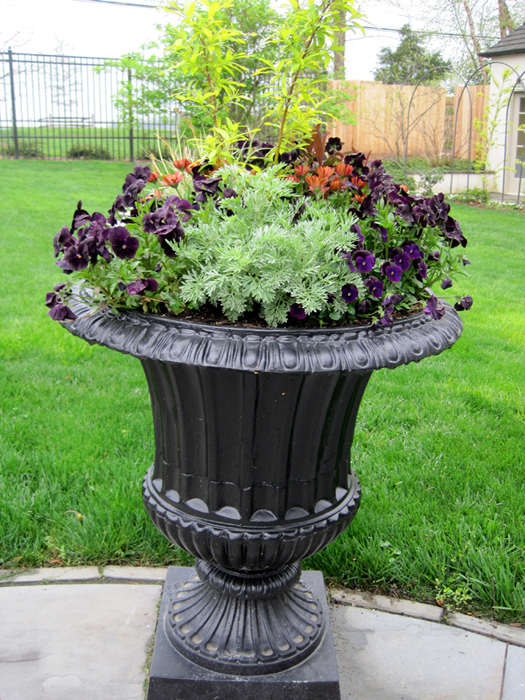 a formal urn of purple, orange, chartreuse and silver welcomes visitors.