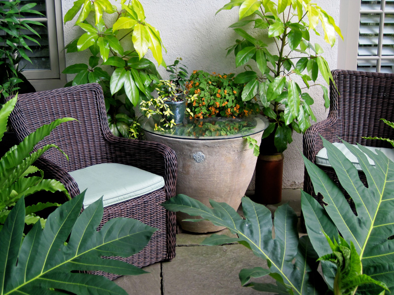 A grouping of containers surrounds a cozy seating nook tucked in at the side of the house.