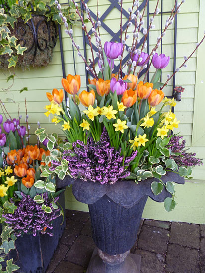 A bouquet of spring containers enchanted gardens - Potted gardentricks beautiful flowers ...