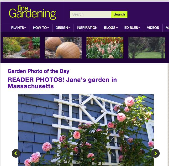 Press Enchanted Gardens