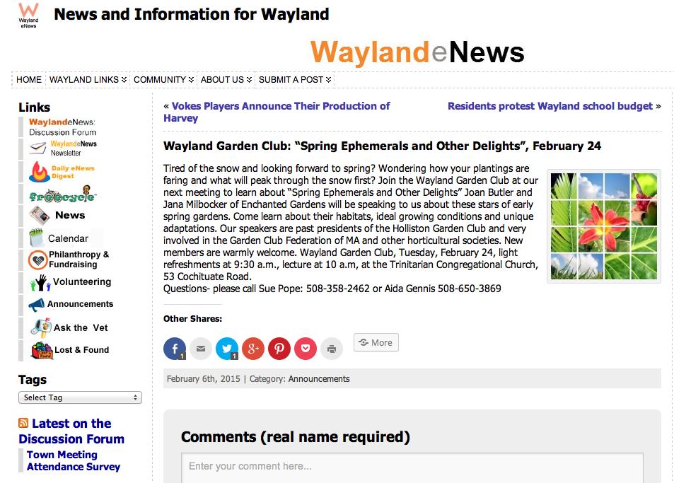 Waylandnews.com