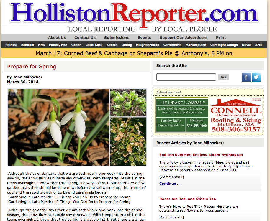 Holliston reporter
