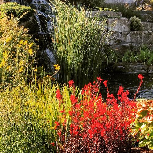 kew-gardens-7