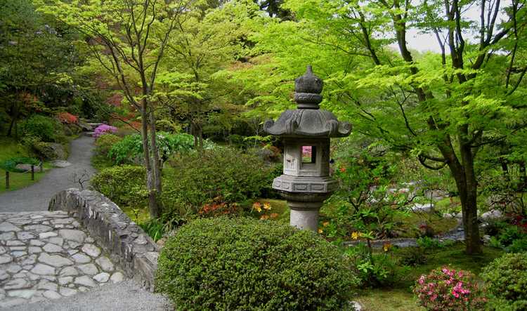 Tranquil Beauty in the Seattle Japanese Garden — Enchanted Gardens