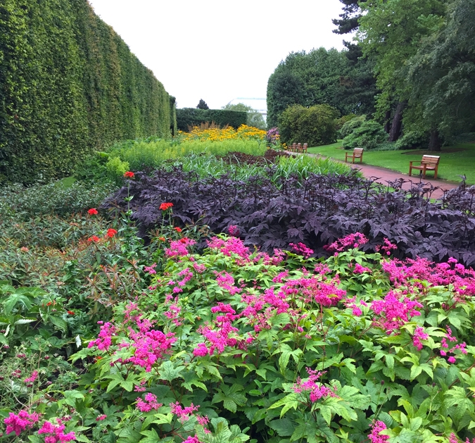 The 500-foot long Herbaceous Border, created in 1902, is backed by a commanding hedge of 158 beech trees. The hedge is pruned annually to retain its 24' height.