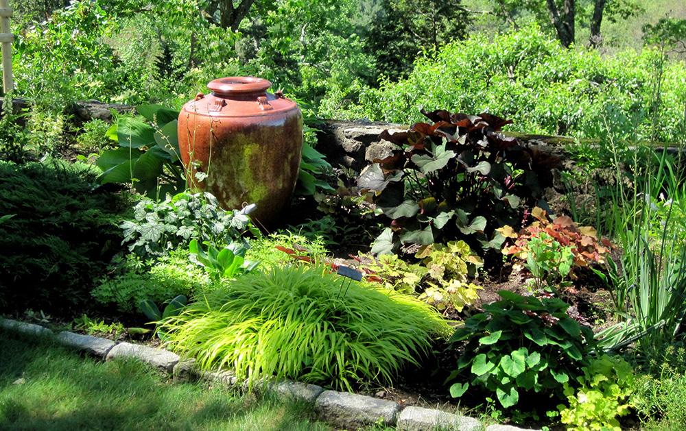 Garden of Wayne Mezzitt.