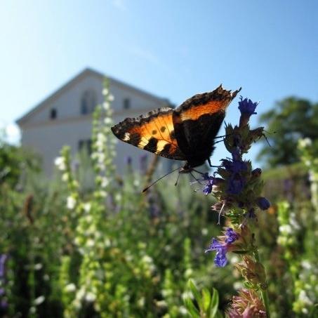 hello getaway, sweden, gotheburg, gunnebo gardens