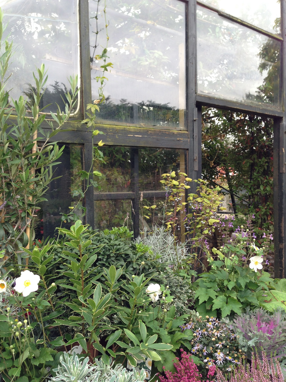green house petersham nurseries hello getaway london city guide