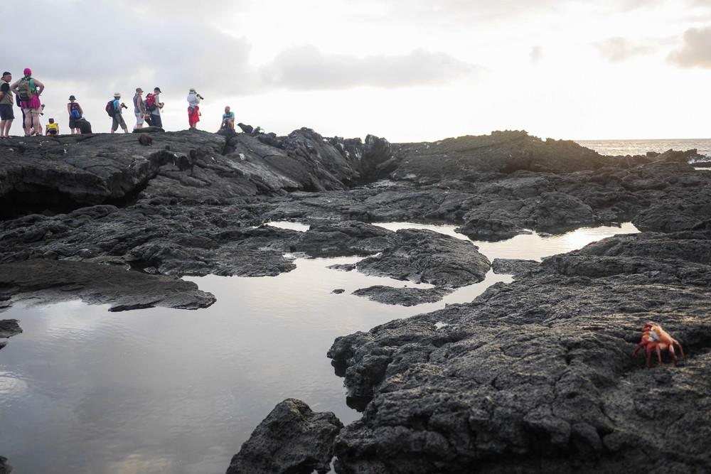 galapagos cruise ecuador adventure guide hello getaway