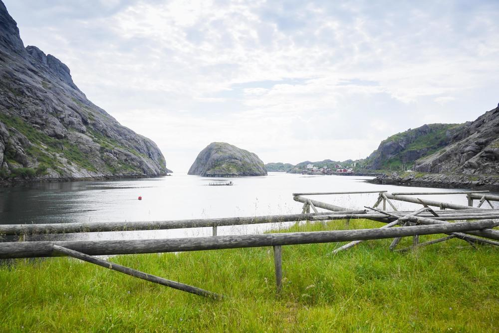 nusfjord lofoten roadtrip