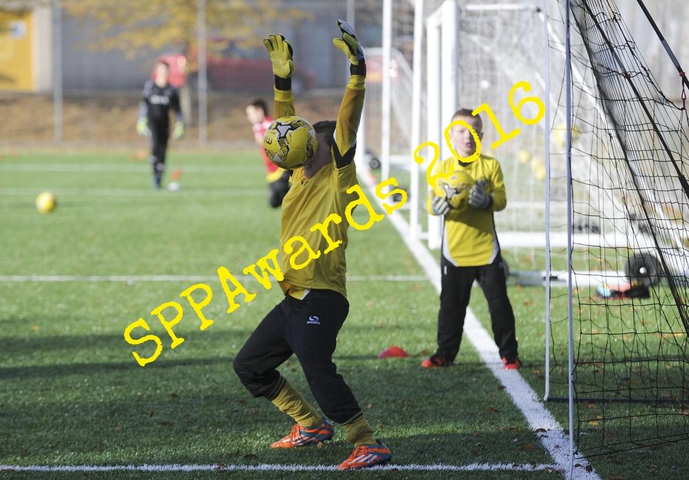 Sportactiongoalie.JPG