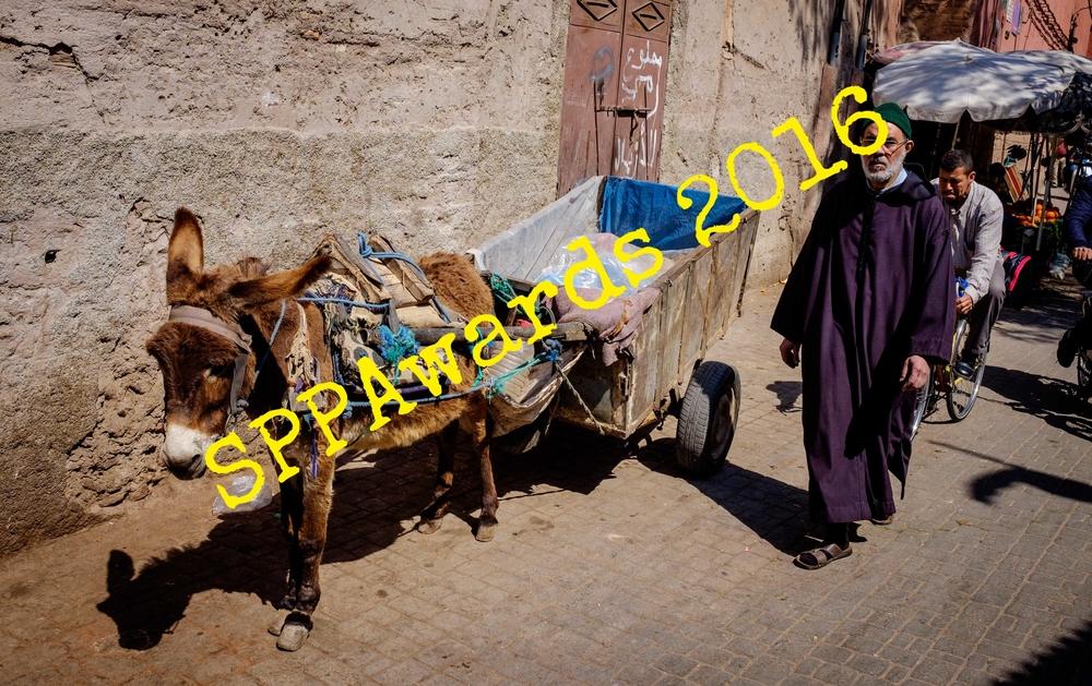 Moroccan life5.jpg