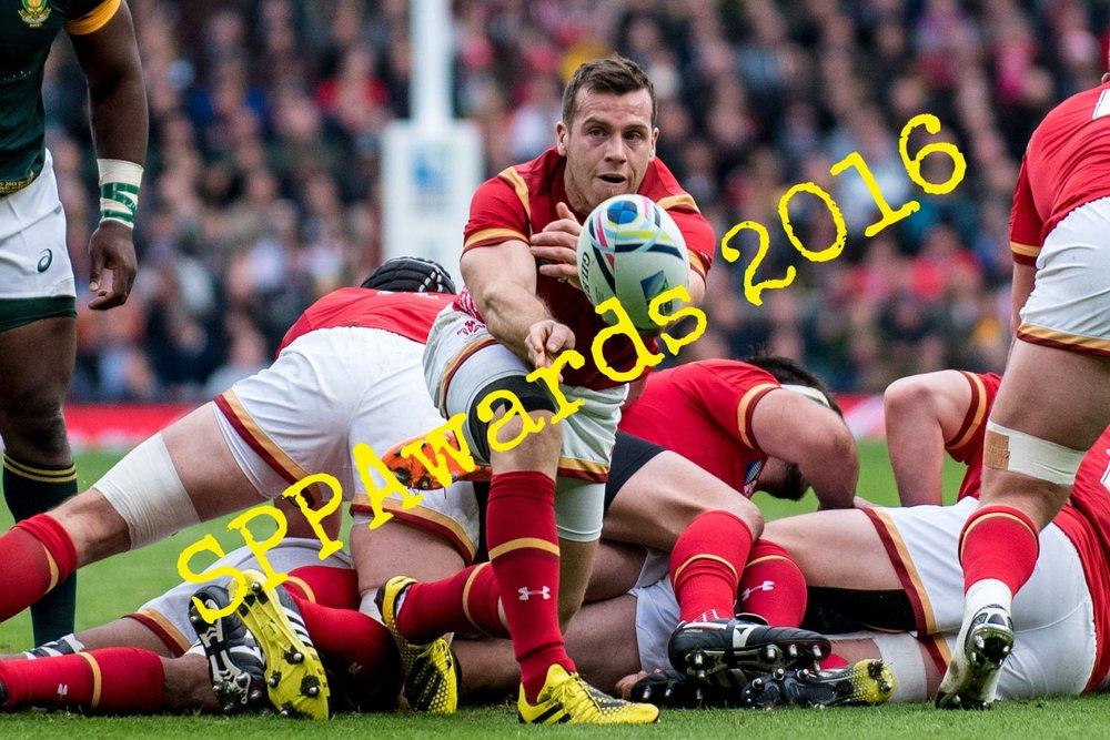 SportsAction_Davies_RWC2015_SAvWAL.jpg