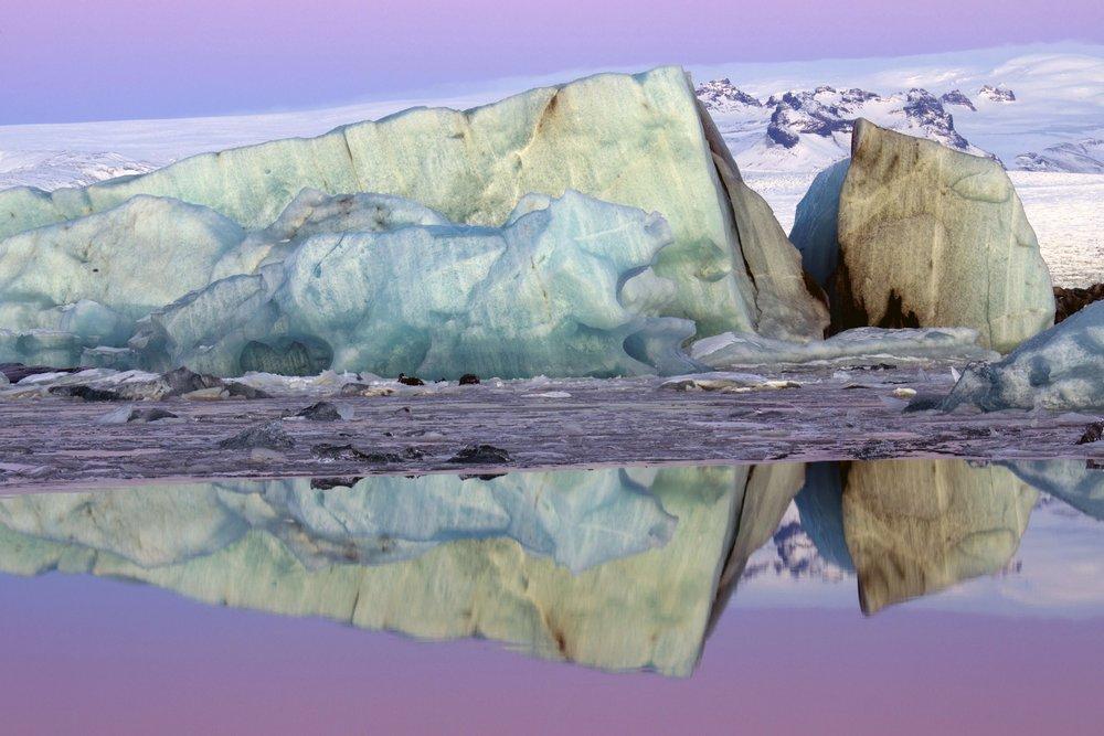 Nature&TheEnvironment_02.JPG