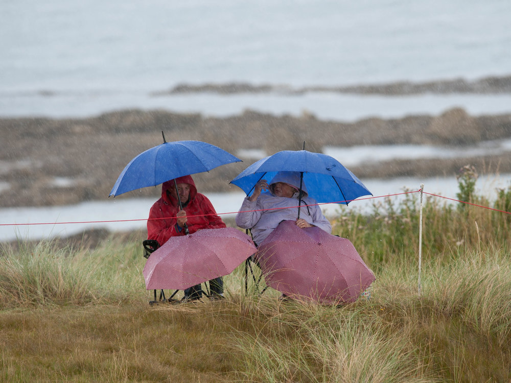 Spectators-and-Brollies_Daily-life-and-people_1.jpg