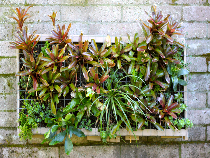 Prototype A DIY Vertical Garden Pallet COCOON HOME