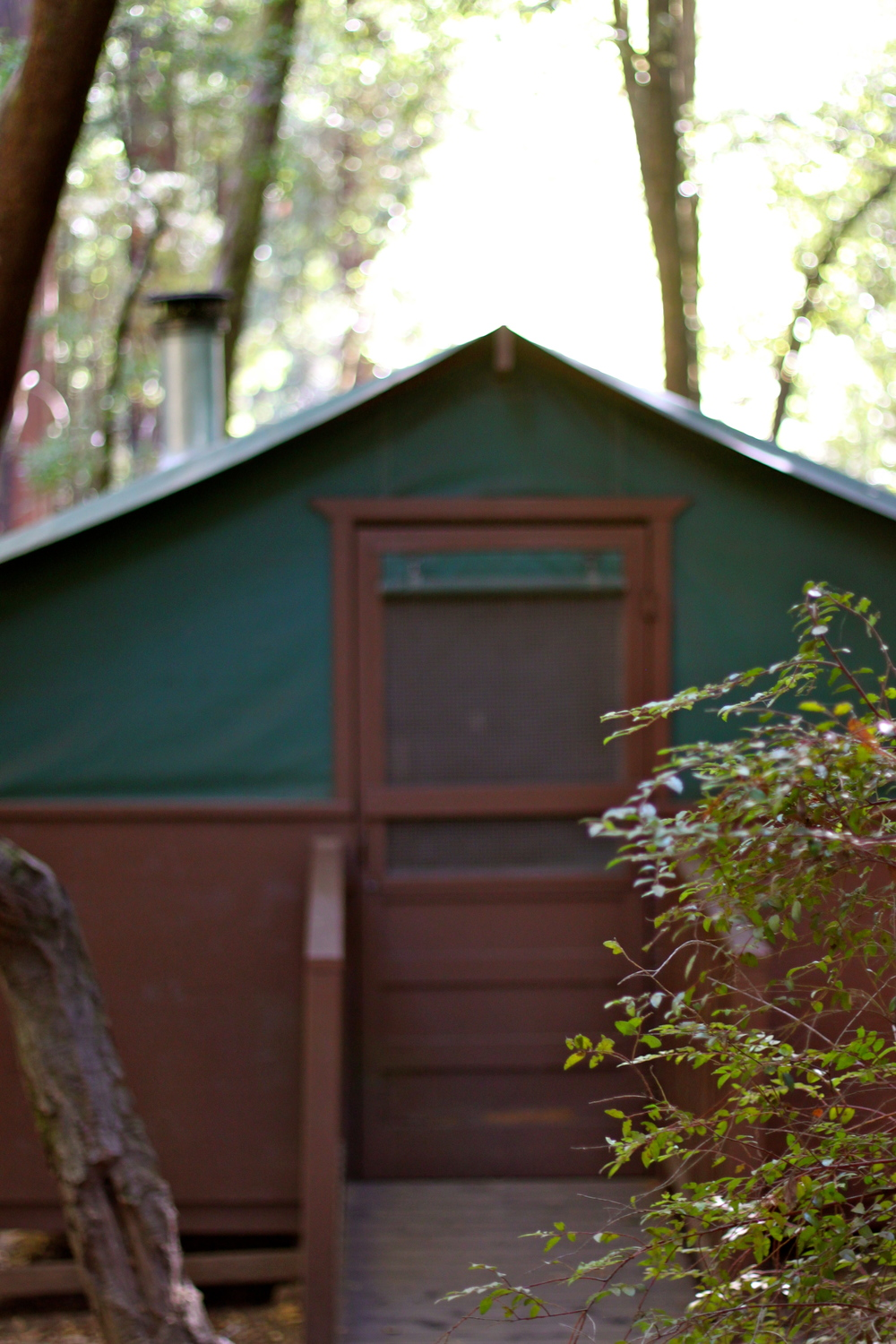 This past weekend we joined 4 other families for a c&ing adventure in the Big Basin Redwoods State Park. Staying in the parku0027s tent cabins made our late ... & Scenes From Big Basin State Park u2014 COCOON HOME