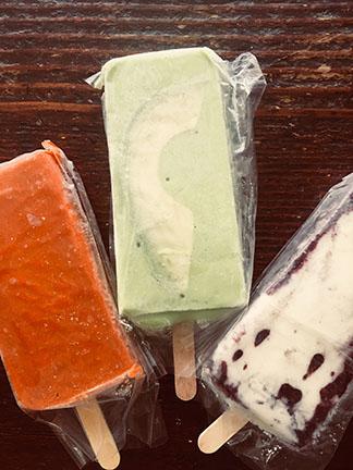 Gourmet Mexican Paletas (popsicles)