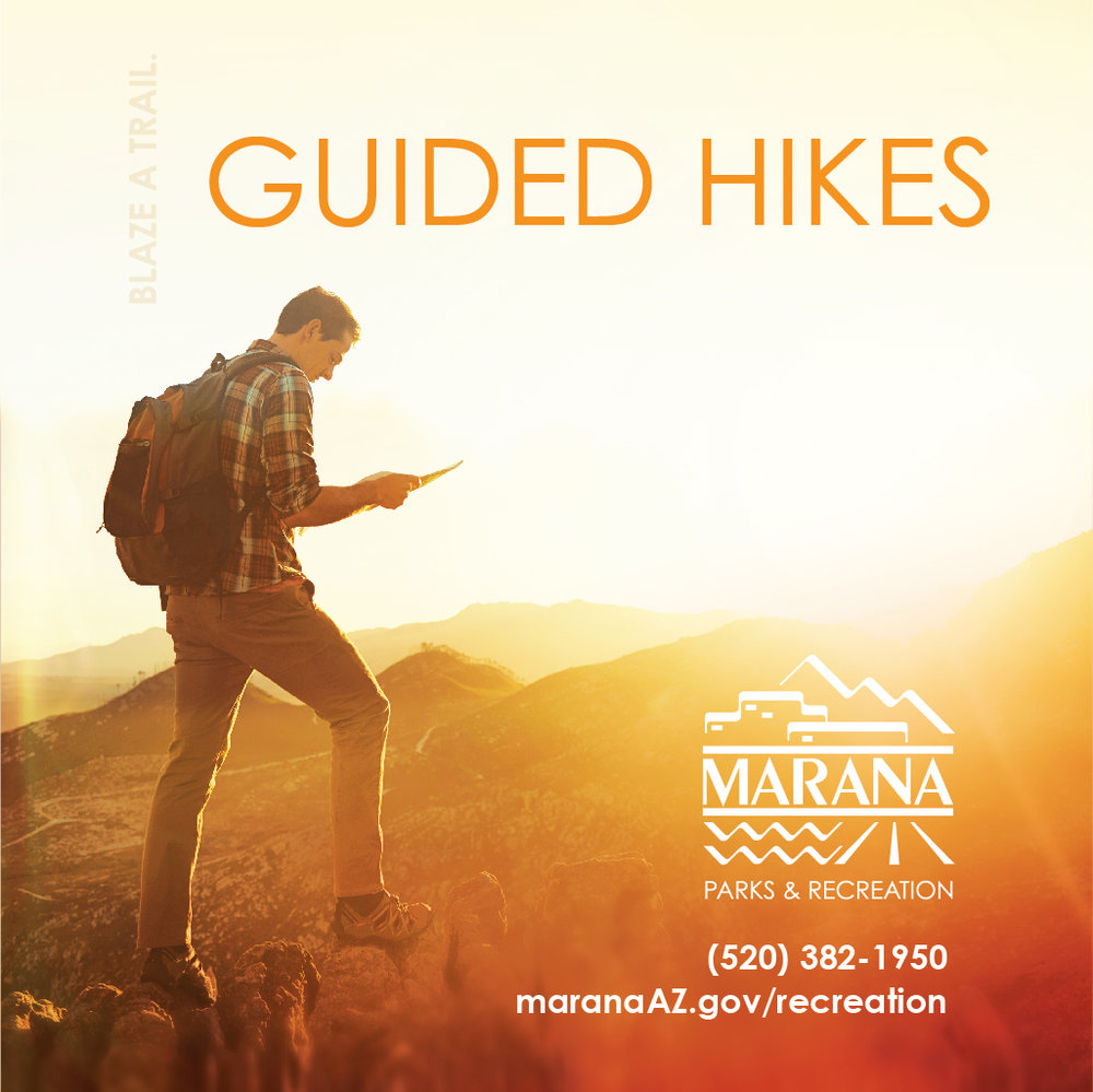 Marana Guided Hikes- Tortolitas