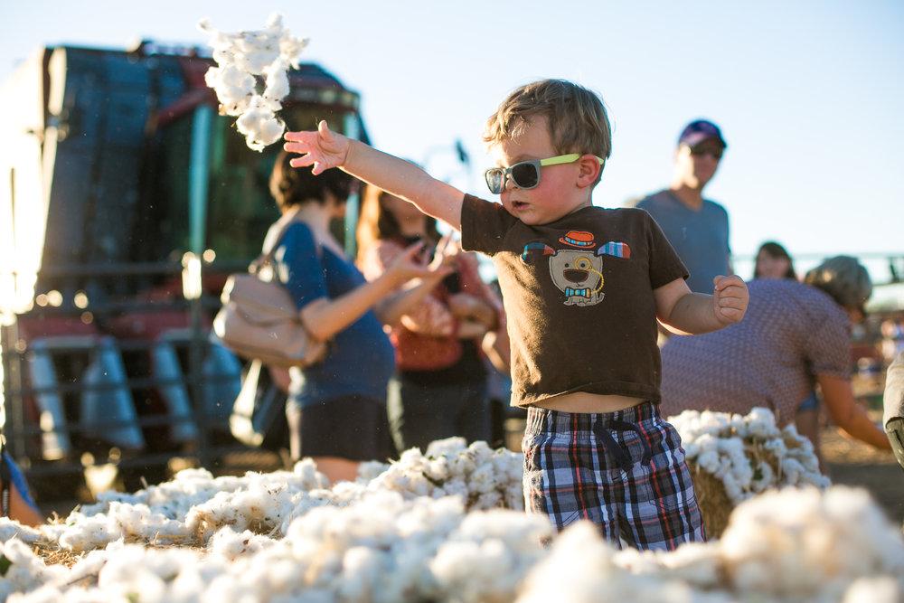CottonFestival-35.jpg