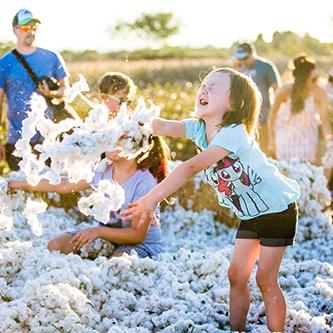 CottonFestival-02Small.jpg