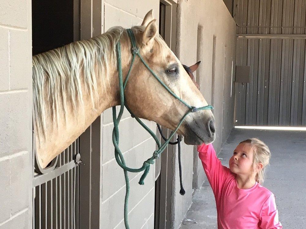 Horse+Camps+Marana%2C+AZ