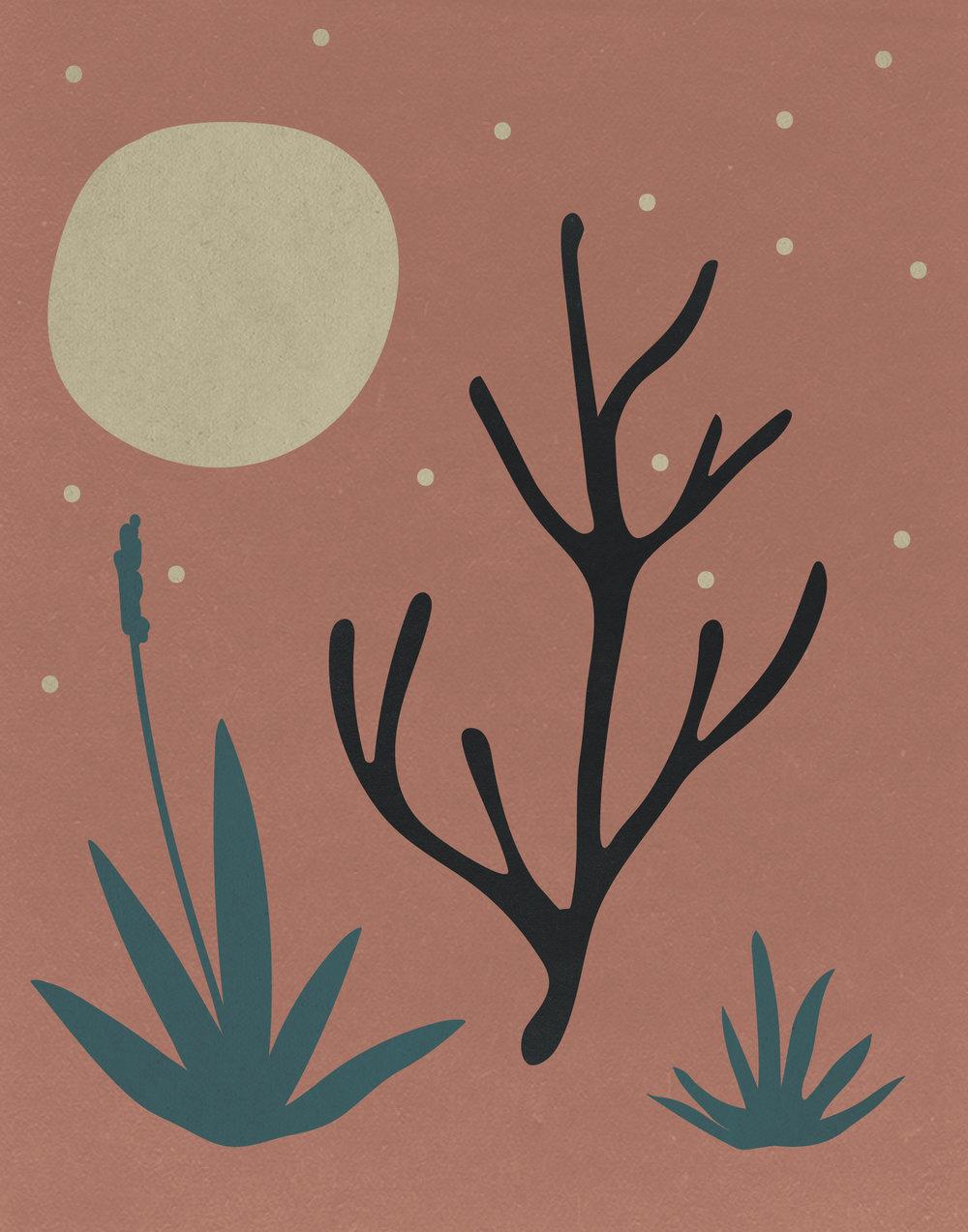 cactus-scape-simple-06.jpg