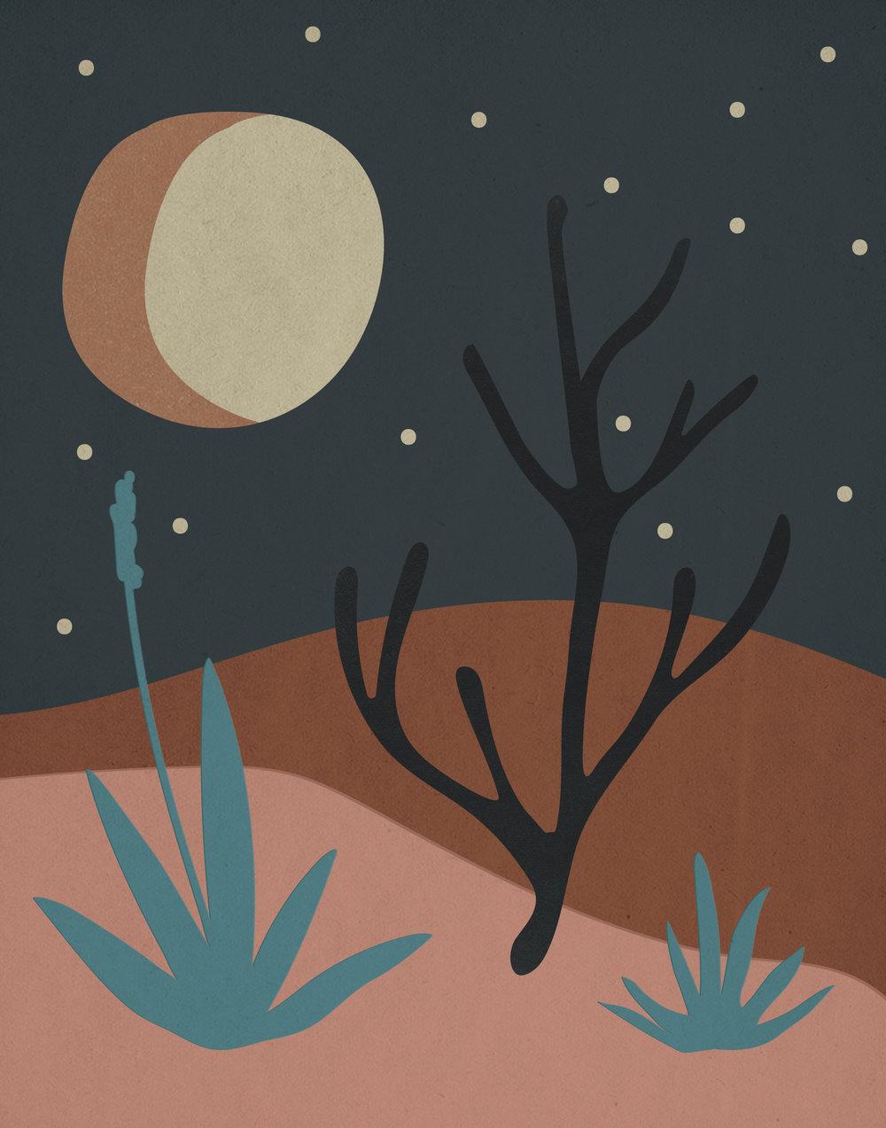 cactus-scape-color1-04.jpg