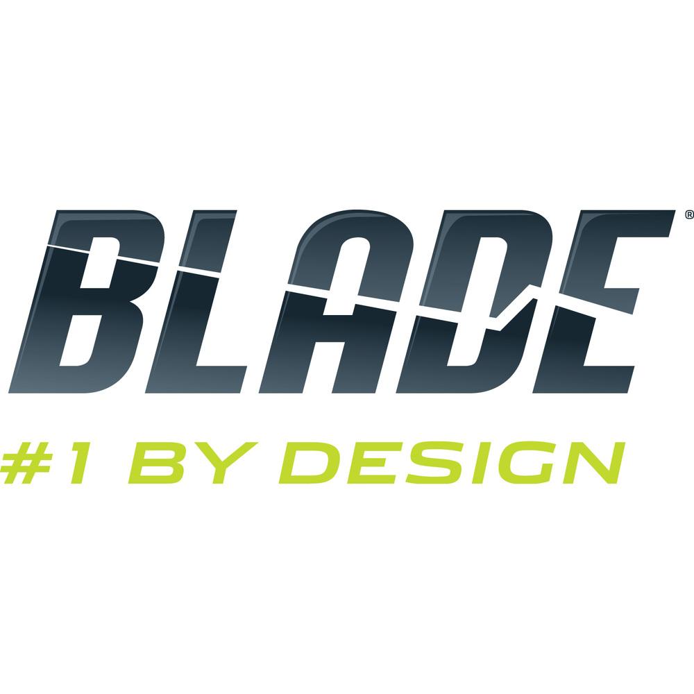 BLH_logo_wtag.jpg