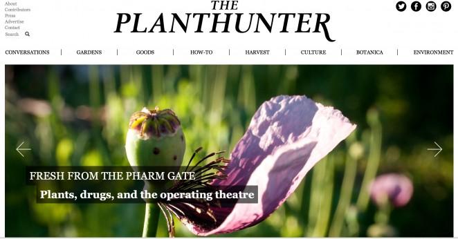 planthunter-662x346.jpg