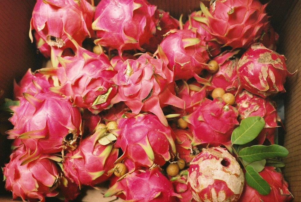 Boxed pitaya/dragonfruit.