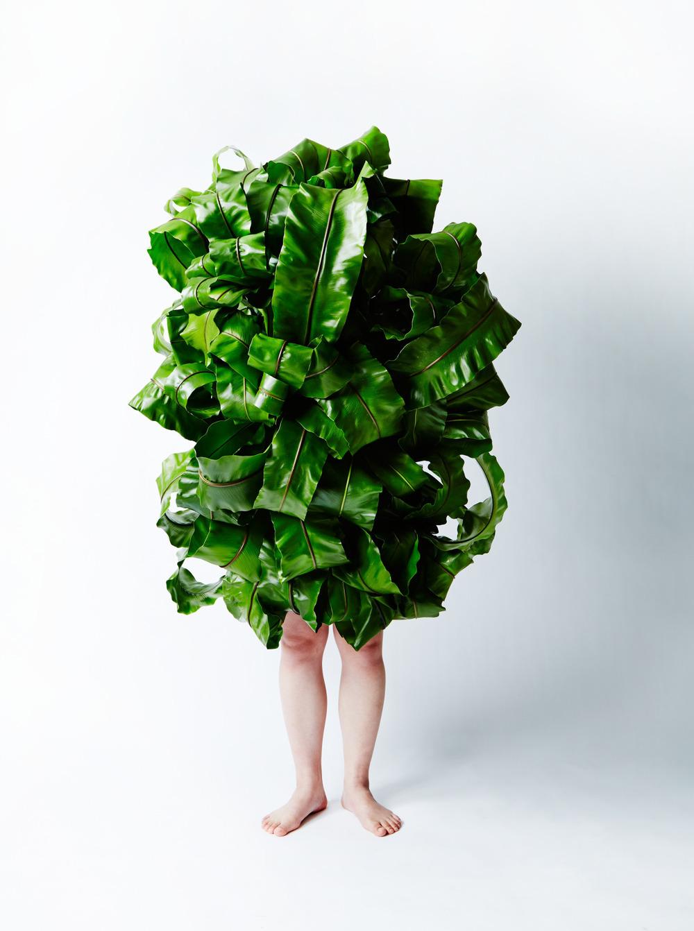 Plant Man, 2015