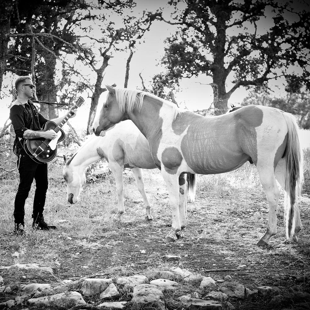 HorseSqr-lrg.jpg