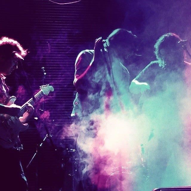 1423549868_Live_purple.JPG