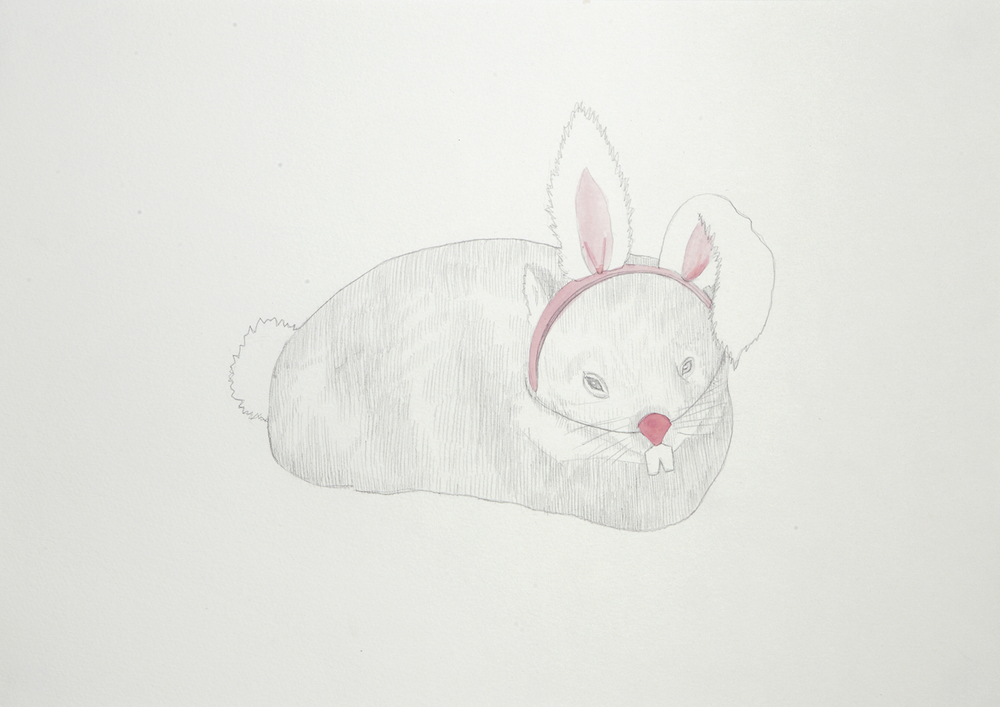 Adopt a Wombat Campaign, 2012, Watercolour and pencil on paper, 29.0 x 42.0 cm, Photo: Sam Scoufos