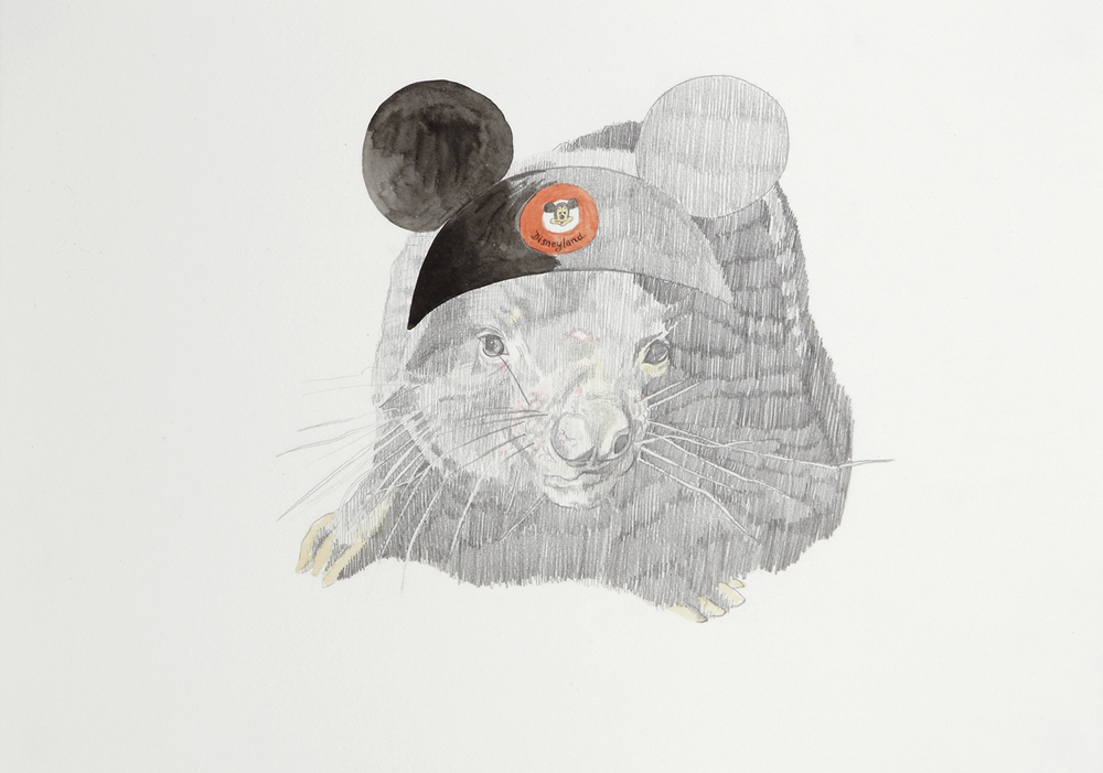 Dreaming of Disneyland, 2012, Watercolour and pencil on paper, 29.0 x 42.0 cm, Photo: Sam Scoufos