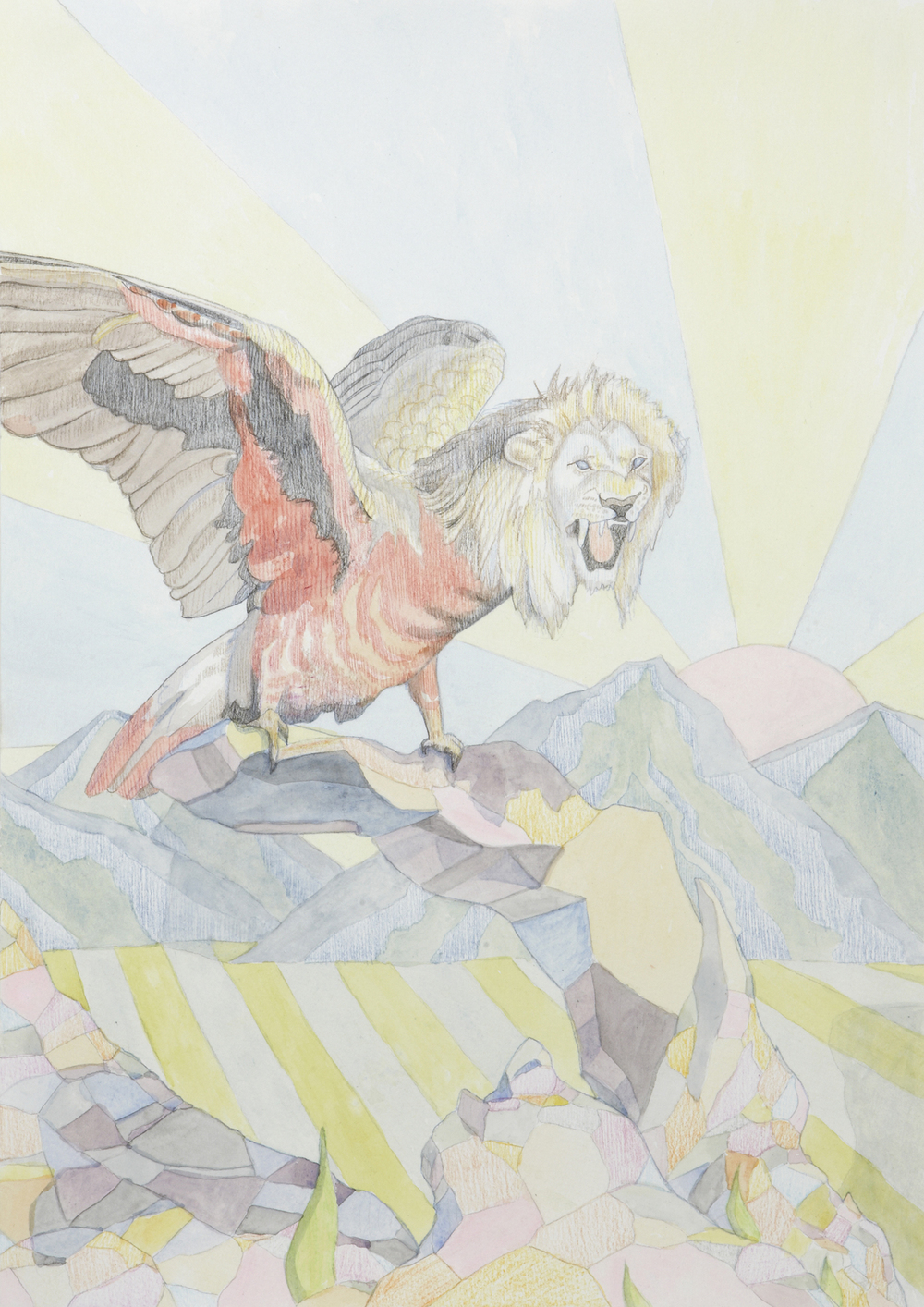 Lion Gallah #3, 2012, Watercolour and pencil on paper, 29.7 x 42.0 cm, Photo: Sam Scoufos