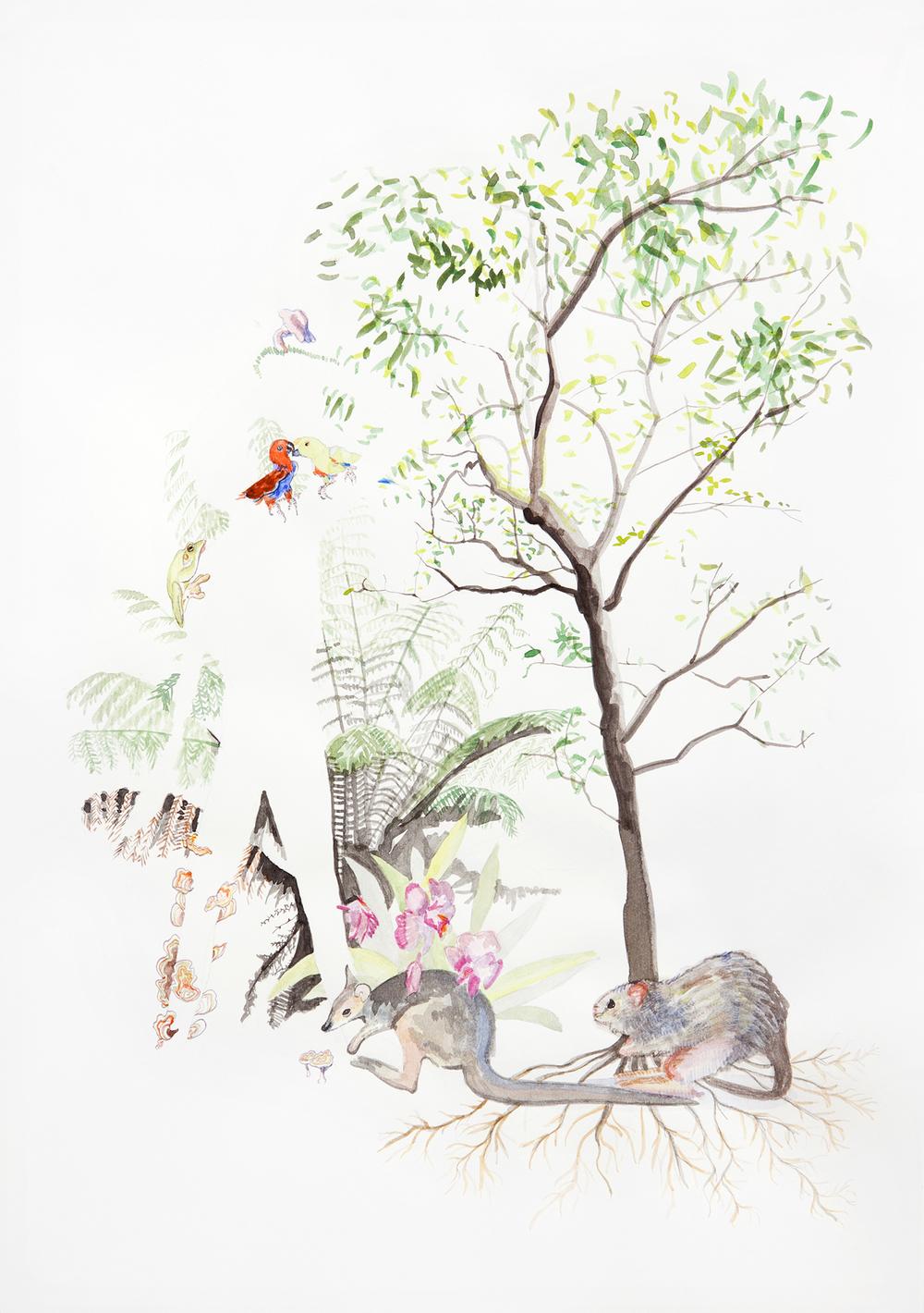 Australian at Heart? #1, 2011, Watercolour on paper, 21.0 x 29.5 cm, Photo: Sam Scoufos