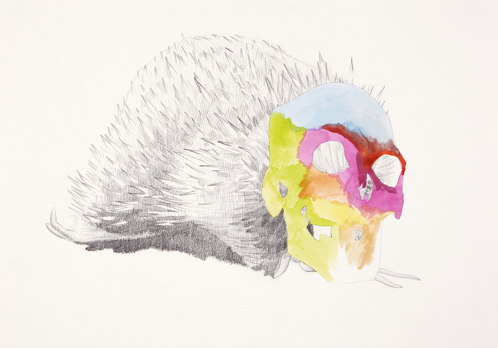 Skull Centric Behaviour #9, 2011, Watercolour and pencil on paper, 42.0 x 29.7 cm, Photo: Sam Scoufos