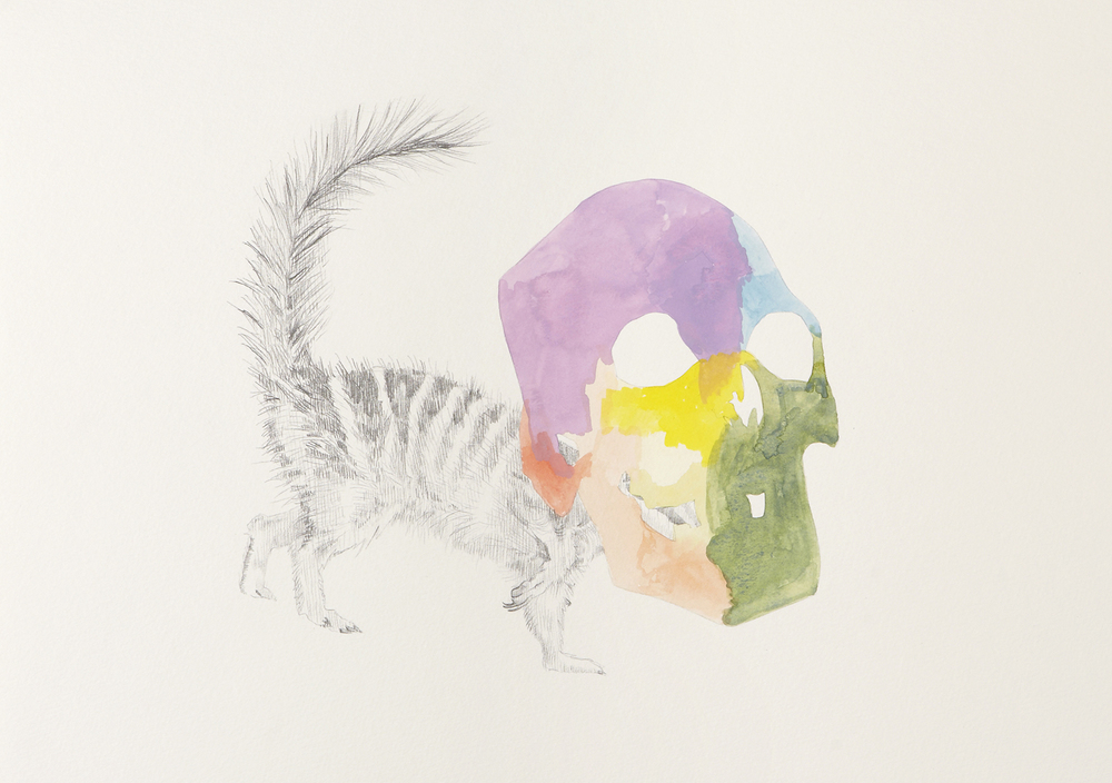 Skull Centric Behaviour #12, 2011, Watercolour and pencil on paper, 42.0 x 29.7 cm, Photo: Sam Scoufos