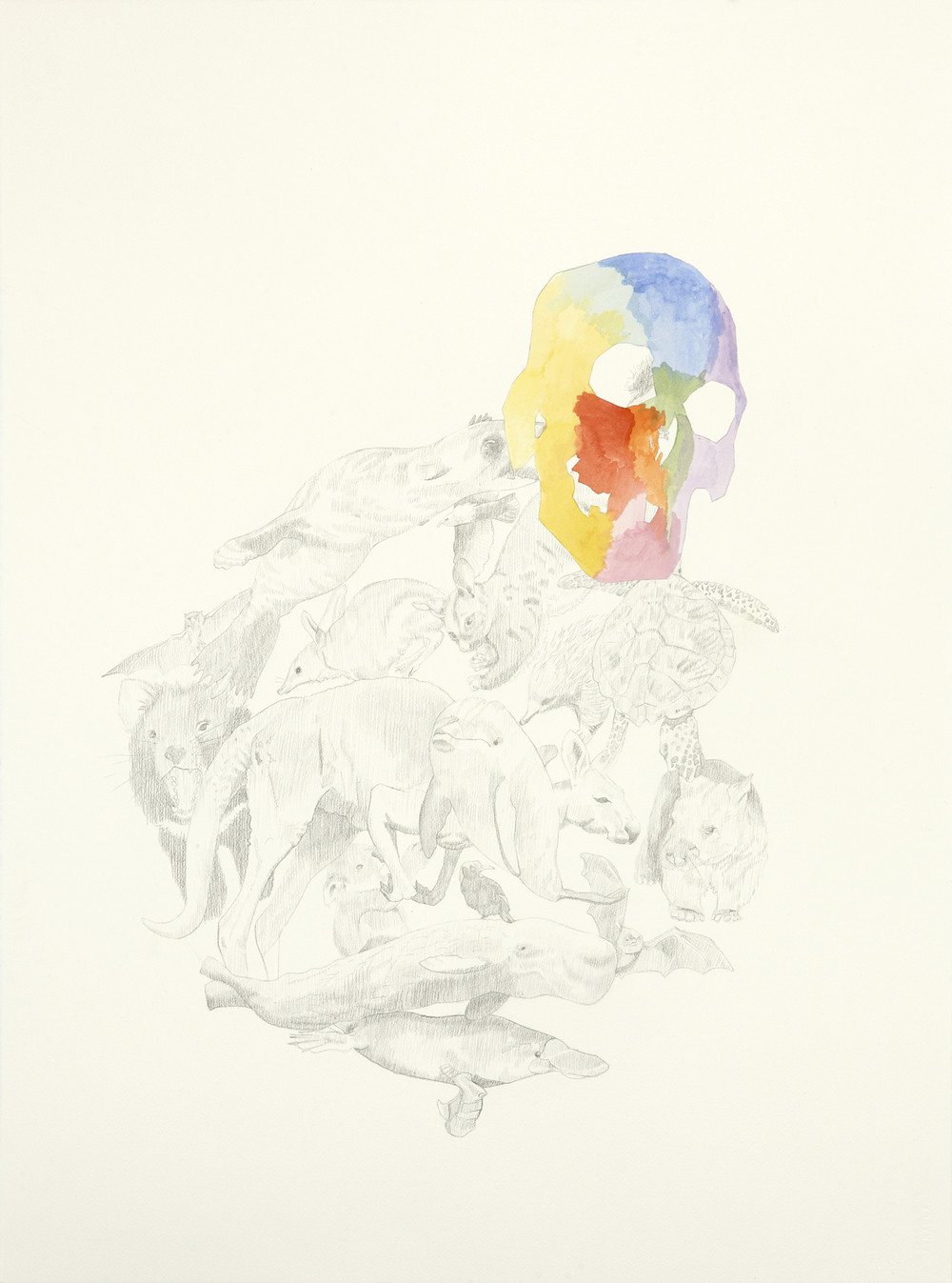 Skull Centric, 2011, Watercolour and pencil on paper, 56.0 x 76.0 cm, Photo: Sam Scoufos