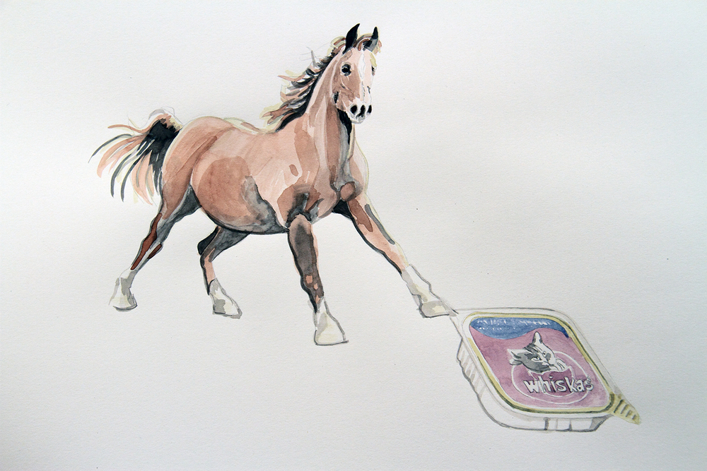 Whiskas, 2010, Watercolour on paper, 29.7 x 42.0 cm, Photo: Michaela Gleave