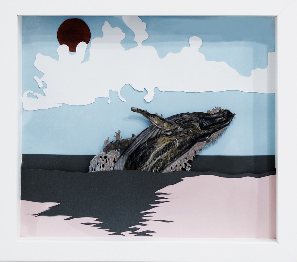 Whale, 2008, Pastel on card