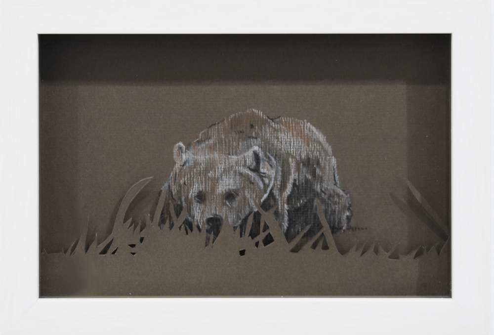 Baby Brown Bear, 2008, Pastel on Card, 24 x 30 x 3.8 cm