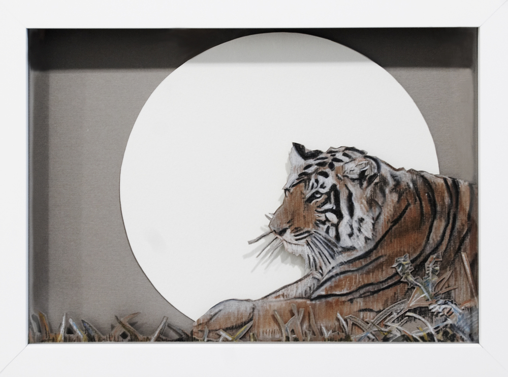 Tiger, 2008, Pastel on Card, 32 x 24 x 3.8 cm
