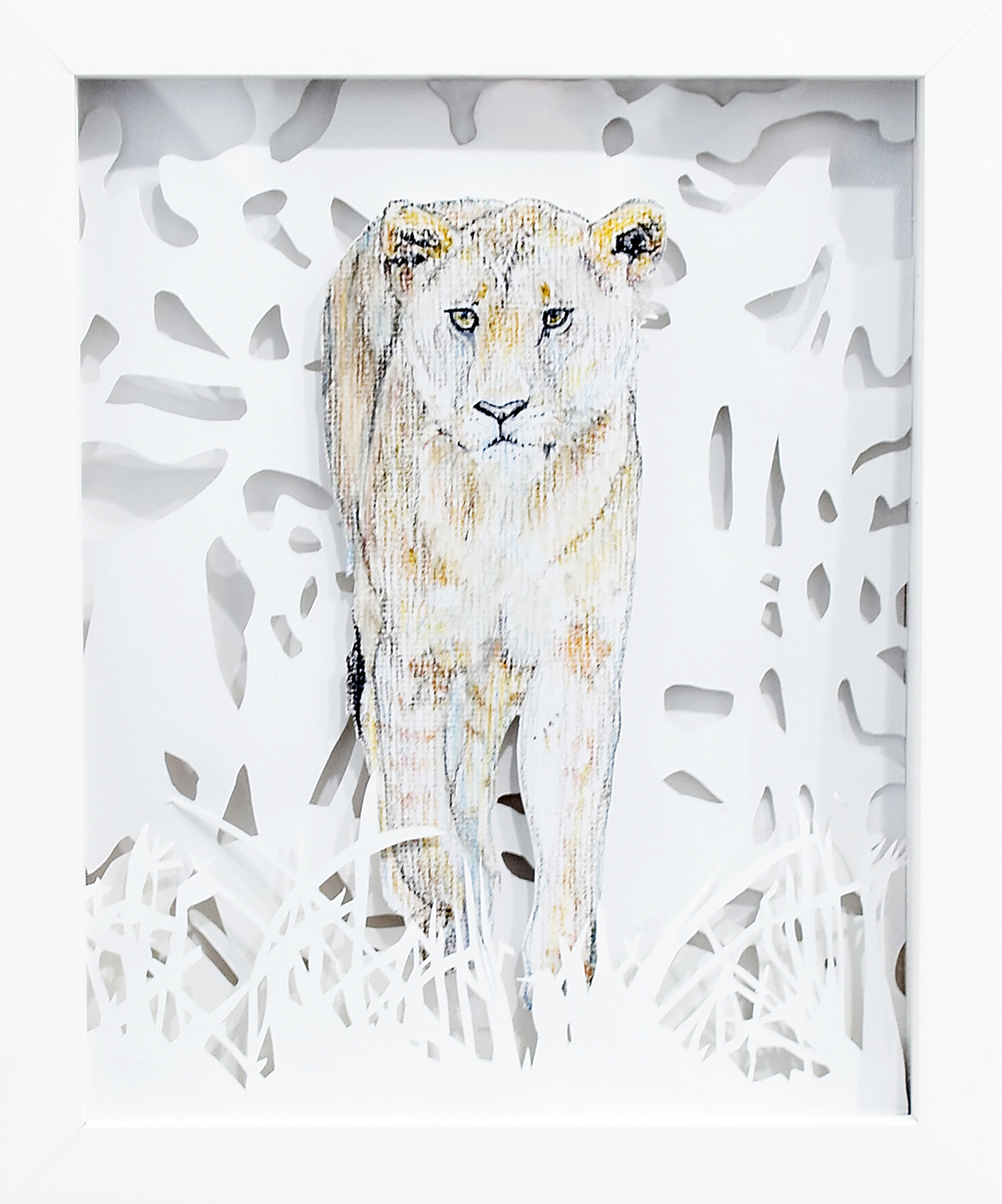 Lioness, 2008, Pastel on Card, 23.2 x 28 x 3.8 cm