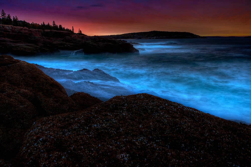 Acadia Sunrise.jpg